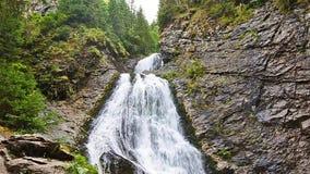 Cascade de voile du ` s de jeune mariée dans les montagnes carpathiennes dans la région de la Transylvanie de la Roumanie clips vidéos