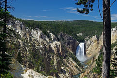 Cascade de Yellowstone Photo stock