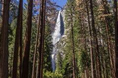 Cascade de Yosemite Image stock
