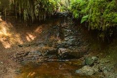 Cascade de Zartapu Photo libre de droits