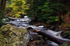 Cascade Deep in the Autumn Forest Royalty Free Stock Image