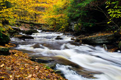 Cascade Deep in the Autumn Forest Stock Photo
