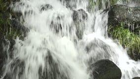 Cascade die op stenen vallen stock videobeelden