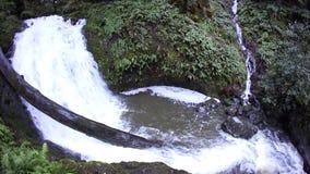 Cascade en Californie du nord clips vidéos
