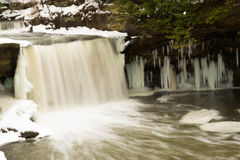 Cascade en hiver images libres de droits
