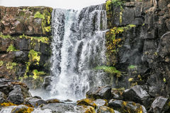 Cascade en Islande Photographie stock libre de droits