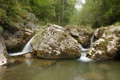 Cascade en montagnes d'Apuseni, Roumanie Image stock