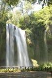 Cascade en nature Photographie stock libre de droits