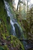 Cascade en parc de Goldstream sur l'île de Vancouver Photos libres de droits