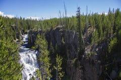 Cascade en parc national de Yellowstone Images libres de droits