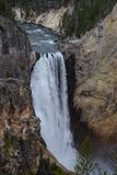 Cascade en parc national de Yellowstone Photo stock