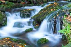 Cascade en parc national Sumava, République Tchèque Photo stock