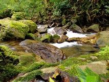 Cascade en Thaïlande Photos libres de droits