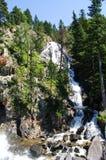 Cascade en vallée de Benasque image libre de droits