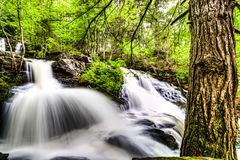 Cascade et arbre Photographie stock libre de droits