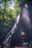 Cascade et arbre, rayons de soleil Photographie stock libre de droits