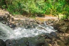Cascade et courant dans la forêt dans Itacare Image stock