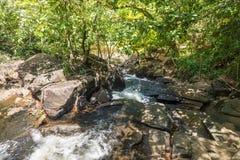 Cascade et courant dans la forêt dans Itacare Photo stock