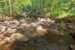 Cascade et courant dans la forêt dans Itacare Photographie stock libre de droits