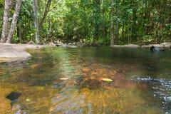 Cascade et courant dans la forêt dans Itacare Photos libres de droits