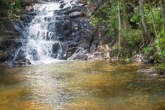 Cascade et courant dans la forêt dans Itacare Images stock