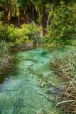 Cascade et Crystal Clear Water, Plitvice ; photos libres de droits
