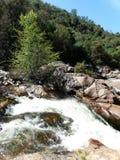 Cascade et eau sauvage entre les roches brun-rougeâtre - Yosemite, séquoia et parc national des Rois Canyon photographie stock