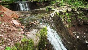Cascade falls in forest stock video footage
