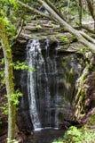 Cascade falls in forest Stock Photos