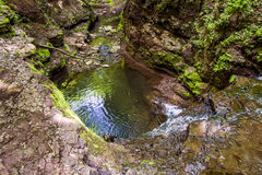 Cascade falls in forest Royalty Free Stock Photography