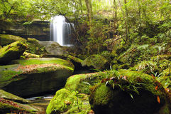 Cascade falls over mossy rocks. Royalty Free Stock Photography
