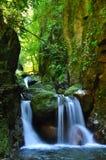 Cascade falls over mossy rocks Royalty Free Stock Photos