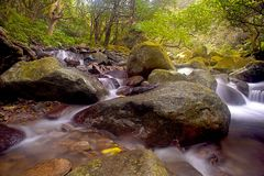 Cascade falls over old plum river with rocks Royalty Free Stock Photos