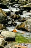 Cascade falls river with rocks Royalty Free Stock Image