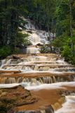 Cascade in forest Stock Images