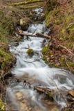 Cascade in the forest. Bohinj Slovenia, Julian alps Royalty Free Stock Photo