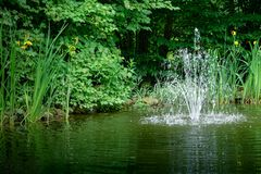 Cascade fountain on the emerald surface of the pond against background of emerald green of shady summer garden. Freshness and coolness on a sunny day royalty free stock image