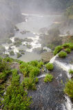 Cascade Iguacu Photo stock