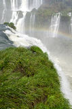 Cascade Iguacu Photo libre de droits