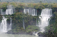 Cascade Iguacu Image stock
