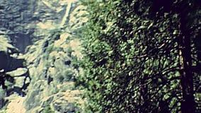 Cascade inférieure de Yosemite NP banque de vidéos