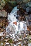 cascade from Lanzarote island, Spain. Stock Image