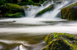 Cascade on the little stream with stones in forest. Small cascades on the forest river among huge bouders covered with moss. taken with long exposure. beautiful Royalty Free Stock Photography