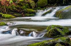 Cascade on the little stream with stones in forest. Small cascades on the forest river among huge boulders covered with moss. taken with long exposure. beautiful Royalty Free Stock Image