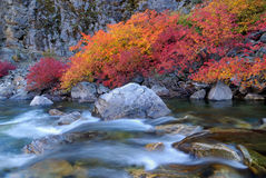 Cascade Loop Creek in fall stock photography