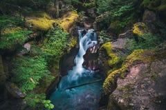 Cascade luxuriante circulant sur des rochers Stationnement national de glacier, Montana, Etats-Unis Photos libres de droits
