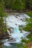 Cascade on McDonald Creek, Glacier National Park. Royalty Free Stock Photo