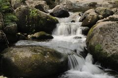 Cascade (milieu) Image libre de droits