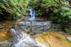 Cascade minuscule en montagnes bleues, Australie photographie stock