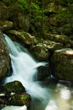Cascade with mossy rocks in forest. Of temperate zone (Central Europe Royalty Free Stock Images